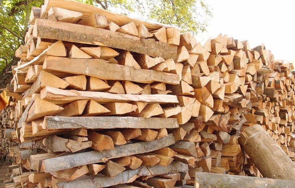 Drvo za ogrjev